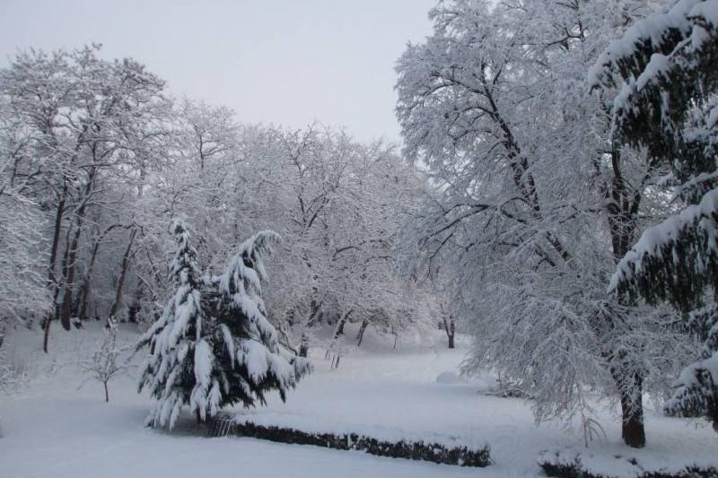 Udvar télen