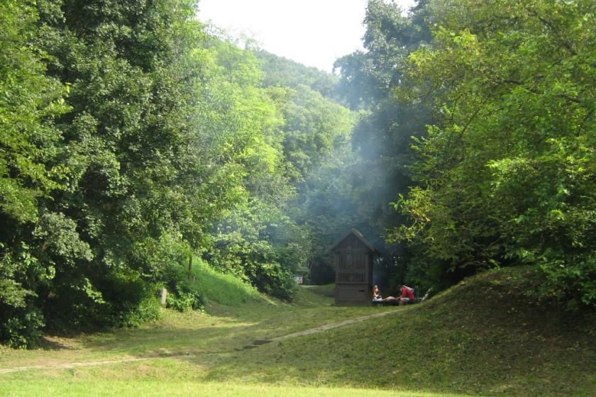 Tűzrakóhely a Szőnyi parkban