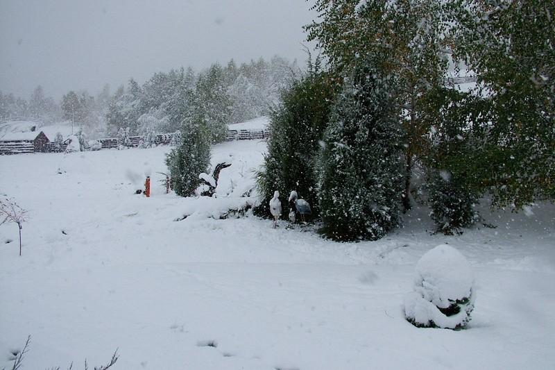 Vadvölgy Panzió télen