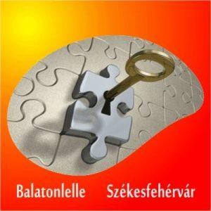 Cseles Kelepce (szabadulós játék)