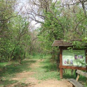 Pákozd-Sukorói Arborétum és Szabadidőpark