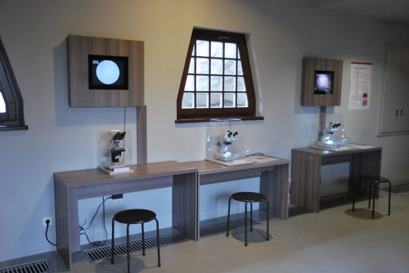 Varázshegy - Darwin labor