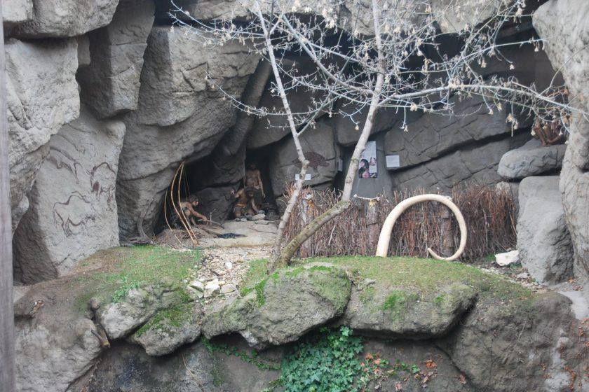Varázshegy - Neandervölgy