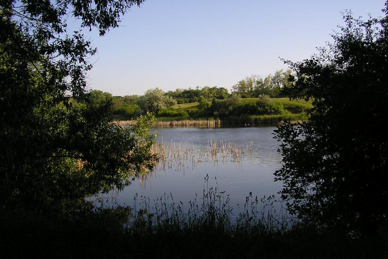 Töreki Halastavak Természetvédett Terület